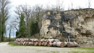 vert-de-vin-chateau-feret-lambert-bordeaux-14