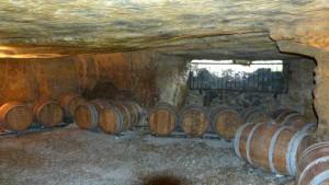 vert-de-vin-chateau-feret-lambert-bordeaux-19