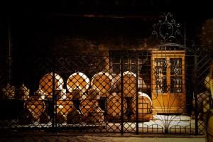 vert-de-vin-camus-cognac-borderies-24