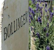 La Maison de Champagne Bollinger certifiée «viticulture durable en Champagne»