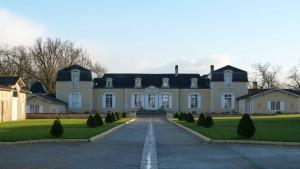 vert-de-vin-chateau-de-rouillac-pessac-leognan