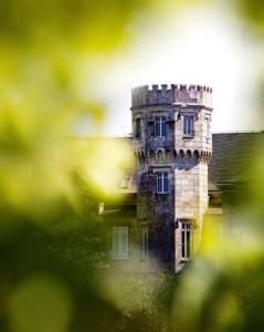 vert-de-vin-chateau-de-ferriere-cru-classe-margaux-oenotourisme-1