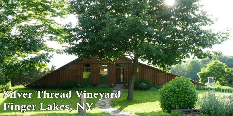 vertdevin-silver-thread-vineyard-finger-lakes-new-york-winery