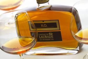vertdevin-vignobles-lesgourgue-chateau-laubde-armagnac-art-mecenat-1