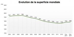 vertdevin-vertdevin-oiv-La Chine devient le deuxième vignoble du monde-1