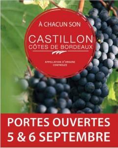 vertdevin-Portes Ouvertes 2015 en Castillon Côtes-de-Bordeaux-affiche