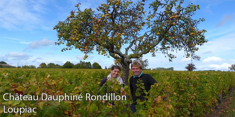 vertdevin-Château Dauphiné Rondillon Loupiac Vignobles Darriet sweet bordeaux