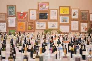 vertdevin-vinisud-salon-wine-fair-2016-wine-vin-6