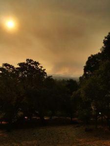 Les vignobles de Napa et de Sonoma durement frappés par des incendies de forêt