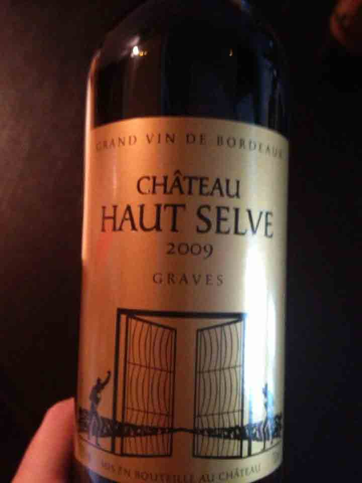 Château Haut Selve 2009 – Graves (red)