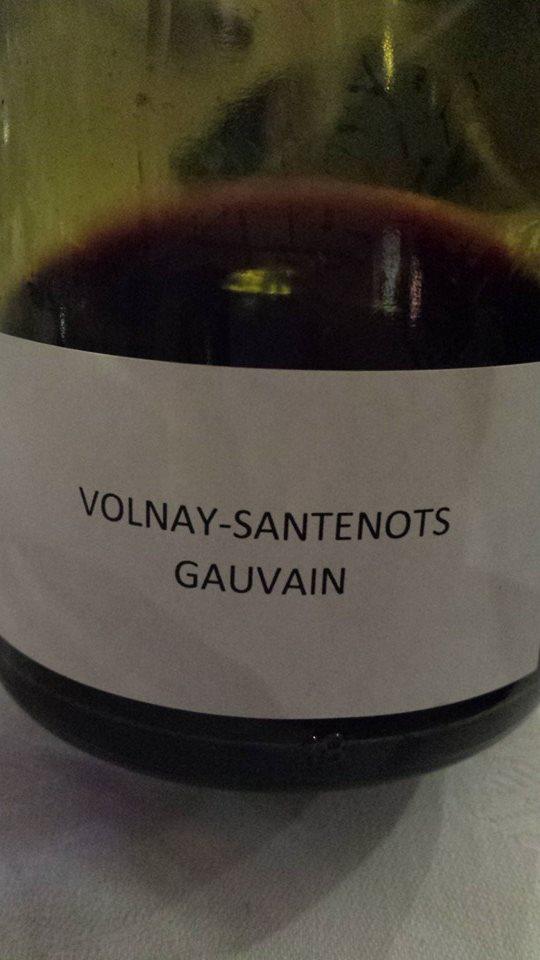 Domaine des Hospices de Beaune – Gauvain 2013 – Volnay Santenots 1er Cru