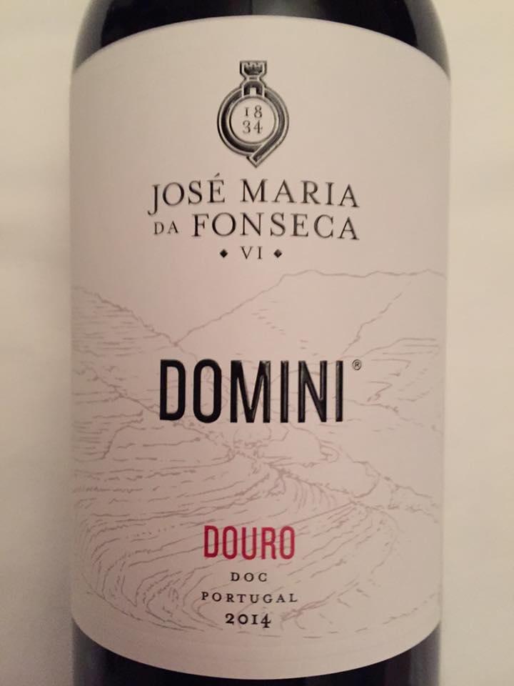 José Maria da Fonseca – Domini 2014 – Douro
