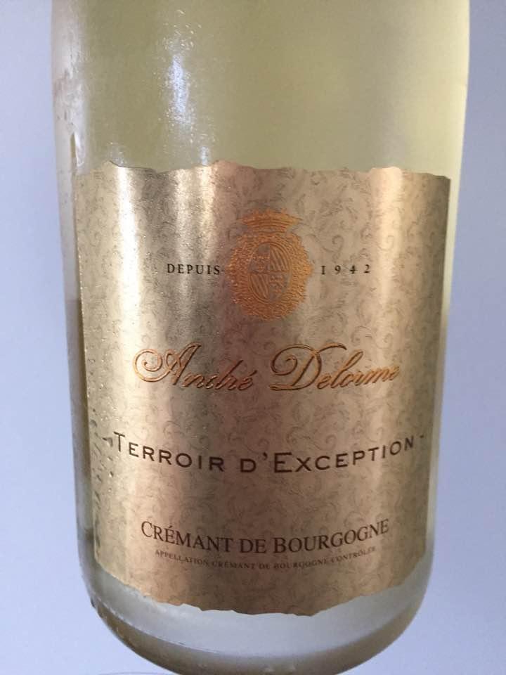 André Delorme – Terroir d'Exception – Crémant de Bourgogne