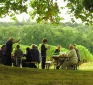 The AOC Castillon Cotes de Bordeaux launches its Open Days