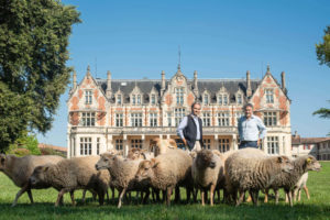Château Cantenac Brown unveils a project to create the only ecologically responsible winery of its kind